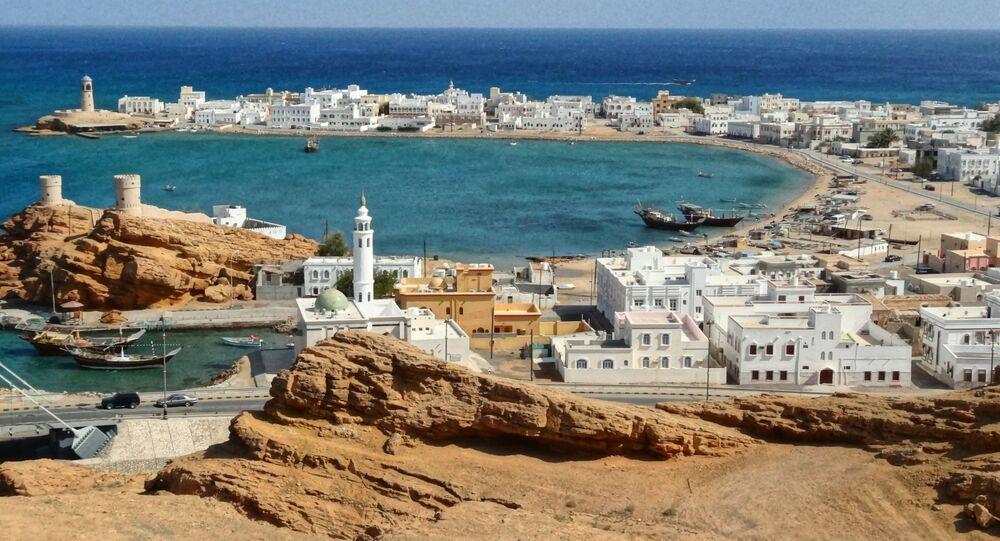 السويد ترغب برفع حجم استثماراتها في سلطنة عمان - Sputnik Arabic