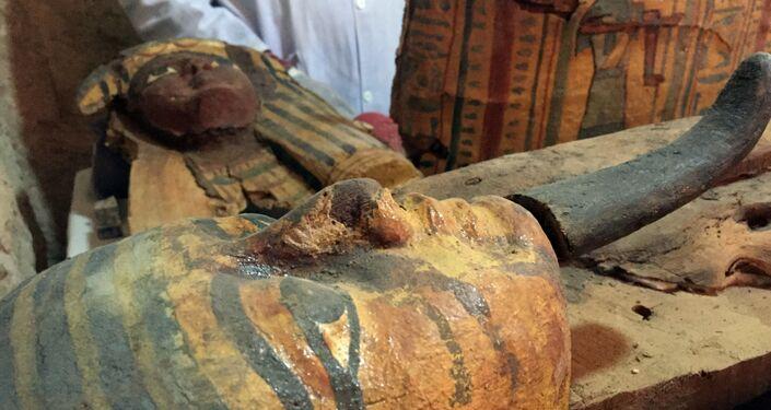 اكتشاف مقبرة تعود للأسرة 18 بالدولة القديمة بمنطقة