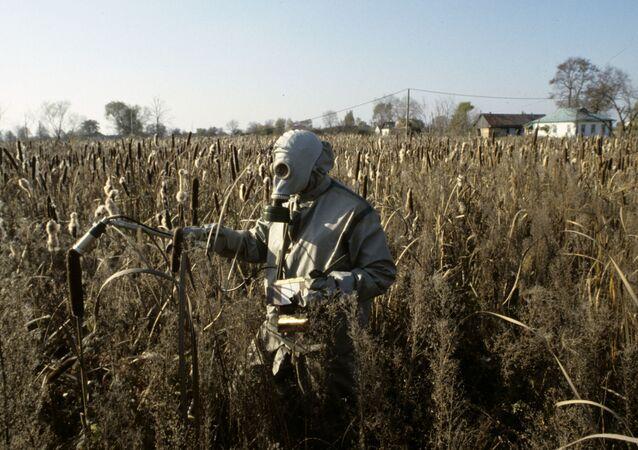 كارثة تشيرنوبيل - شخص يرتدي زياً واقياً يفحص معدل الاشعاع النووي للمزروعات في إحدى القرى المجاورة لمحطة تشيرنوبيل