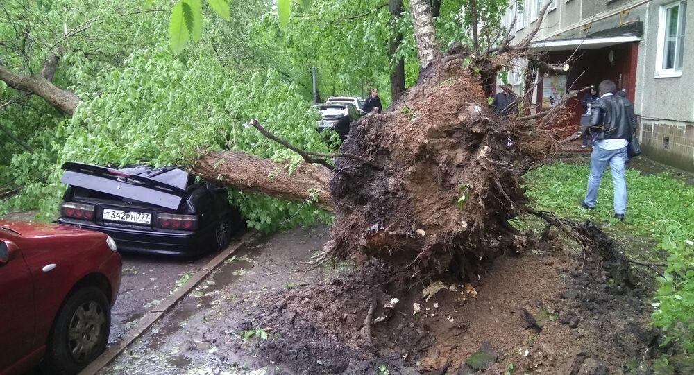 إعصار اجتاح موسكو