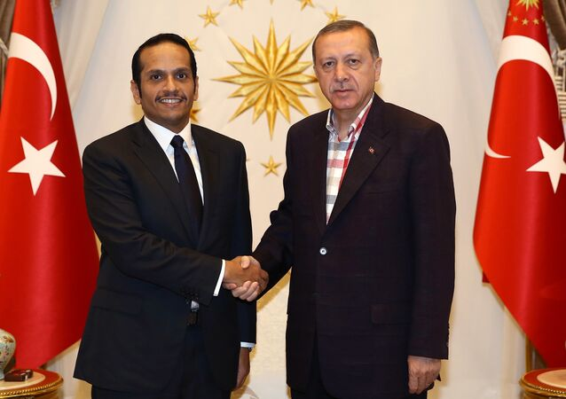 وزير الخارجية القطري محمد بن عبد الرحمن آل ثاني يلتقي بالرئيس التركي رجب طيب أردوغان