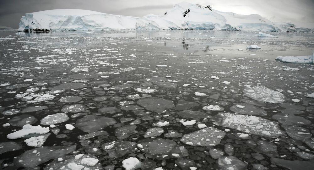 قطع جليدية تطفو على سطح مياه البحر في غرب شبه الجزيرة القطبية الجنوبية، 05 مارس/ آذار 2016