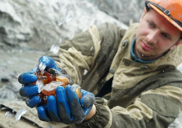استخراج الكهرمان في كالينينغراد
