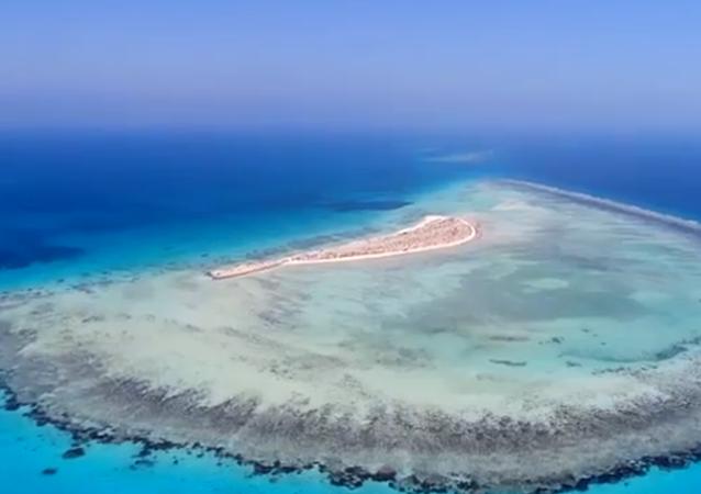 مشروع البحر الأحمر