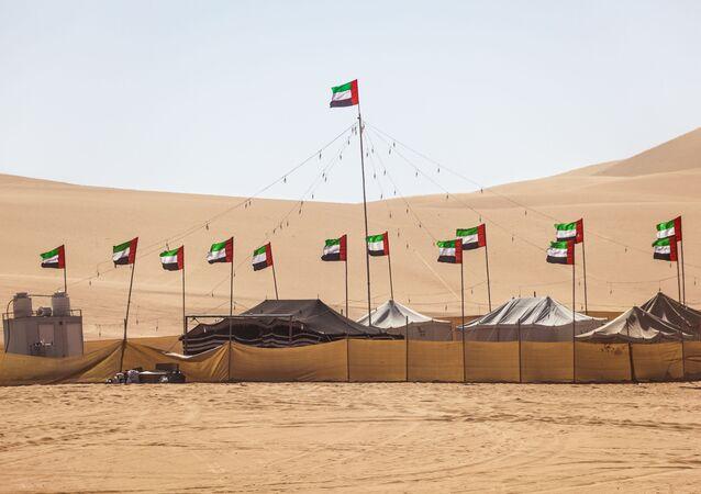 أعلام إماراتية في صحراء، دبي، الإمارات، الشرق الأوسط