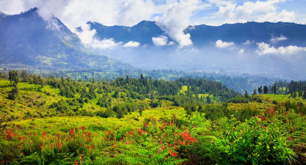 الحديقة الوطنية تينغر سيميرو على جزيرة يافا، إندونيسيا