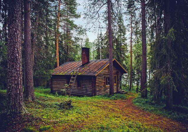 منزل في غابة بفنلندا