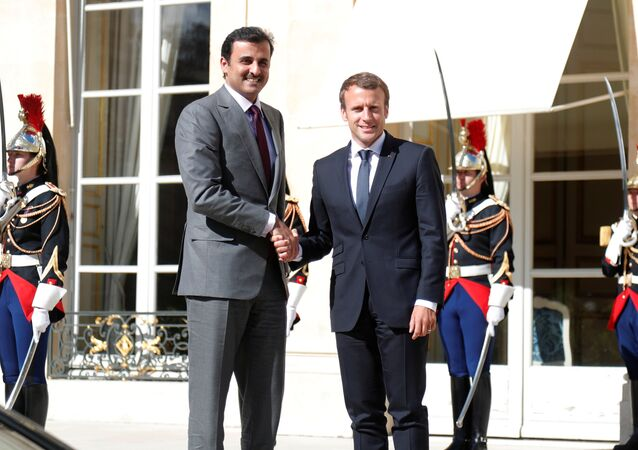 ماكرون يستقبل أمير قطر في قصر الإيليزيه