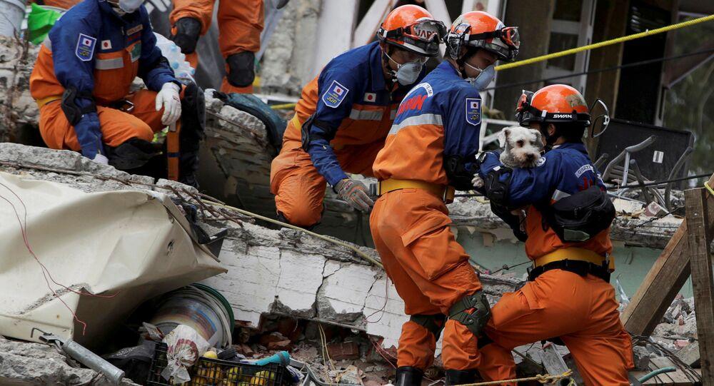 أحد أفراد فريق الإنقاذ الياباني يحمل كلبا وجده تحت الأنقاض ع، بعد وقوع زلزال في مدينة المكسيك، المكسيك 24 سبتمبر/ أيلول 2017