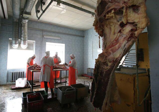 جزارون يقطعون بقرة في روسيا البيضاء
