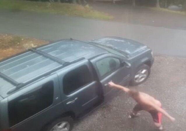 رجل عثر على دبين وأسد داخل سيارته