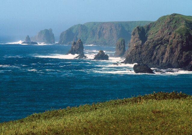 صخور على ساحل المحيط الهادىء