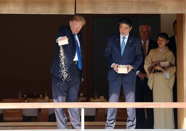 ترامب وهو يطعم الأسماك في قصر الإمبراطور الياباني