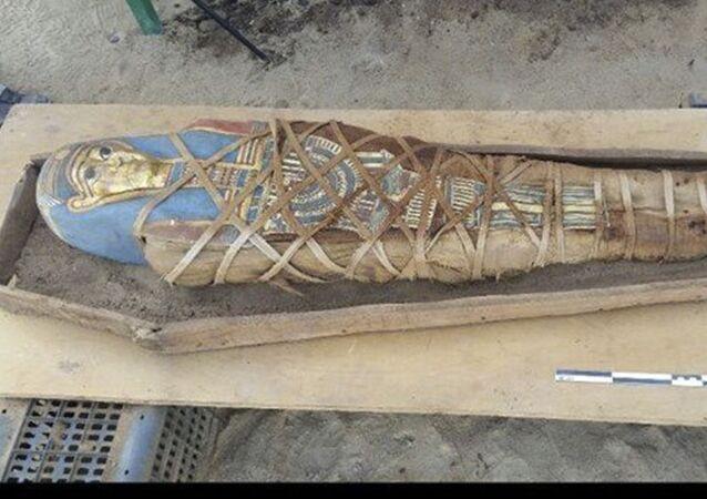 Мумия, найденная российскими учеными в Фаюме