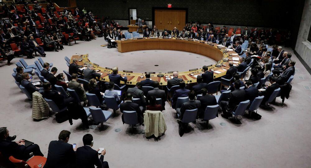 مجلس الأمن الدولي للأمم المتحدة، نيويورك، الولايات المتحدة 29 نوفمبر/ تشرين الثاني 2017