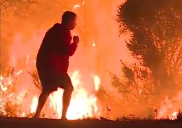 رجل يحاول انقاذ أرنب من حريق كاليفورنيا