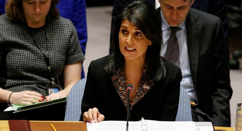 الممثلة الدائمة للولايات المتحدة لدى الأمم المتحدة نيكي هايلي في مجلس الأمن، نيويورك، الولايات المتحدة 21 ديسمبر/ كانون الأول 2017