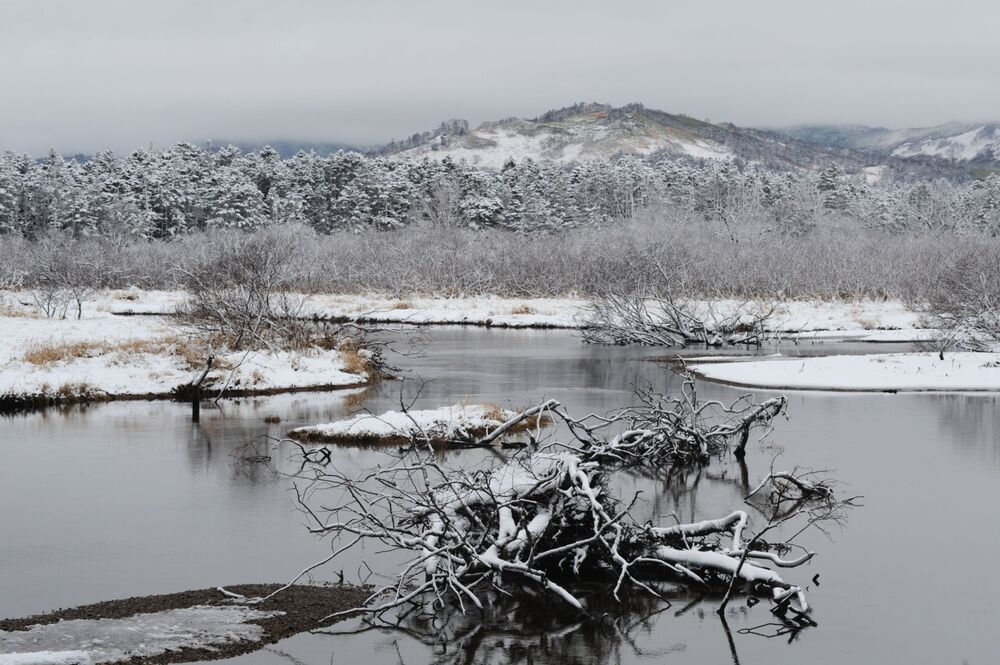 نهر تياتيركا في محمية الكوريل الطبيعية