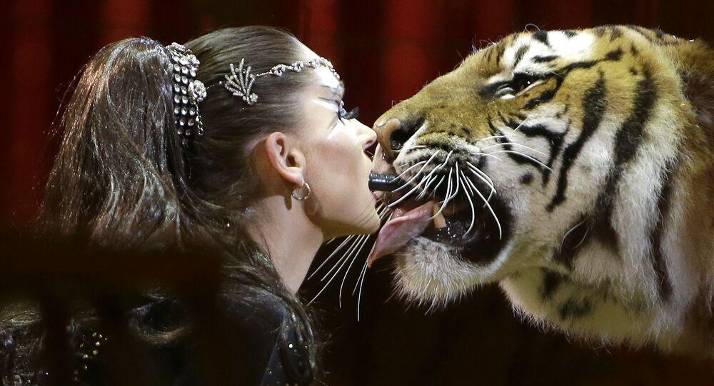 كارمين زاندر خلال عرض مع النمر في سيرك في موناكو، 23 يناير/ كانون الثاني 2018