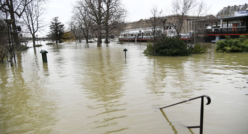 فيضان في نهر السين، باريس، فرنسا 29 يناير/ كانون الثاني 2018