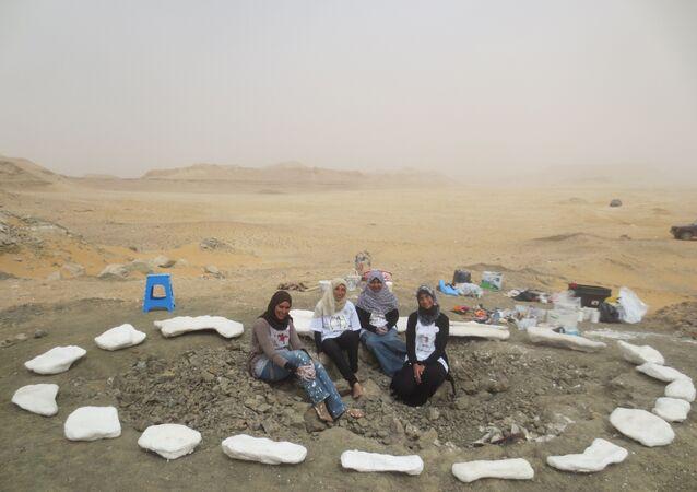 الفريق البحثي مكتشف ديناصور منصوراصورس