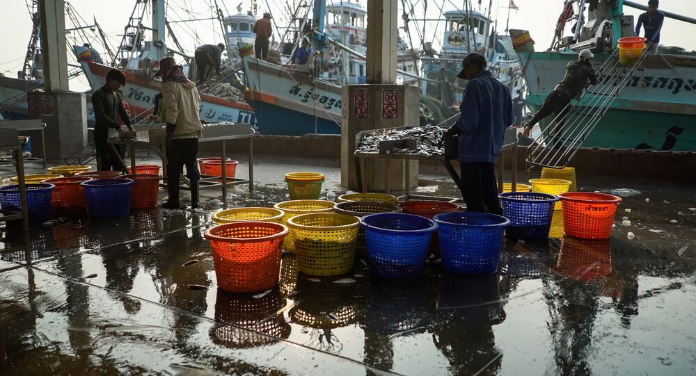 صيادي الأسماك في تايلند
