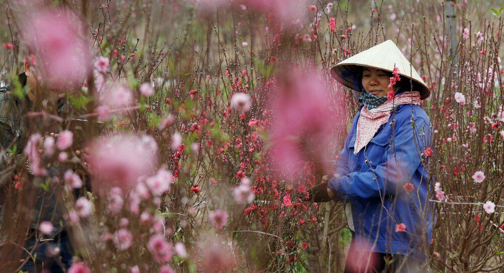 الاحتفال برأس السنة الصينية في 15-16 فبراير/ شباط 2018