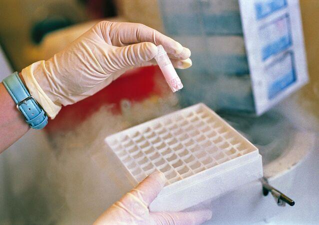 خلايا جذعية