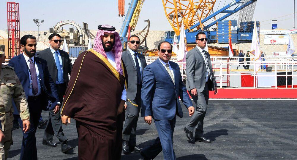 الرئيس السيسي وولي عهد السعودية محمد بن سلمان