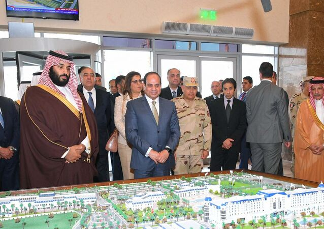 الرئيس المصري عبد الفتاح السيسي وولي العهد السعودي محمد بن سلمان