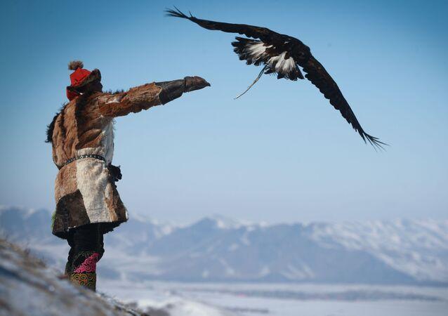 مهرجان الربيع صيد النسور في أولان باتور، منغوليا