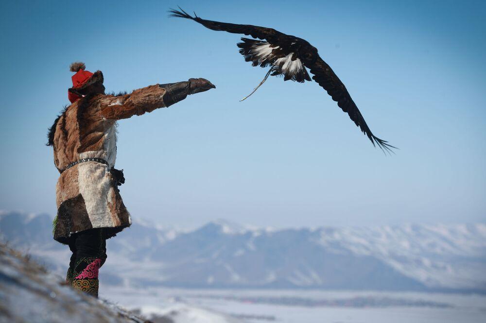 مهرجان الربيع إطلاق النسور في أولا باتور، منغوليا