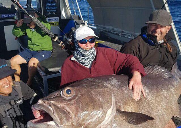 سمكة ضخمة