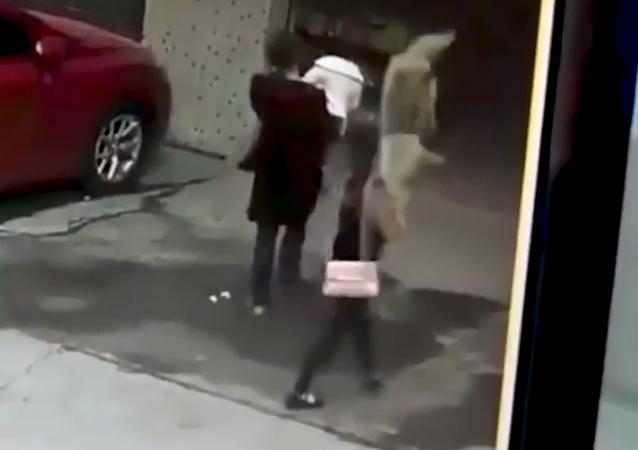 سقوط مدوي لكلب على فتاة
