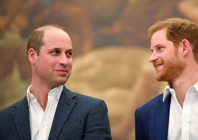 نجلي ولي عهد بريطانيا الأميران هاري ووليام