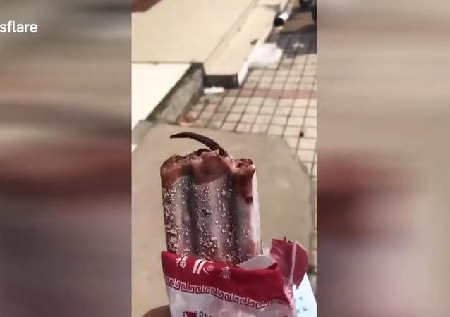 فتاة صينية تعثر على فأر متجمد داخل قطعة مثلجات
