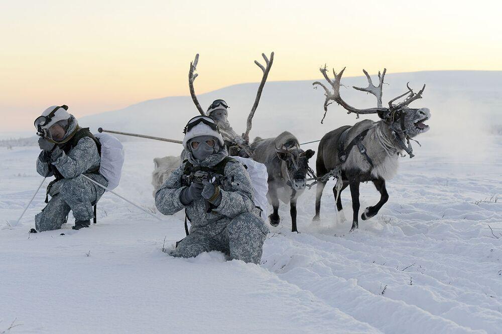 مناورات القوات العسكرية التابعة للأسطول الشمالي الروسي