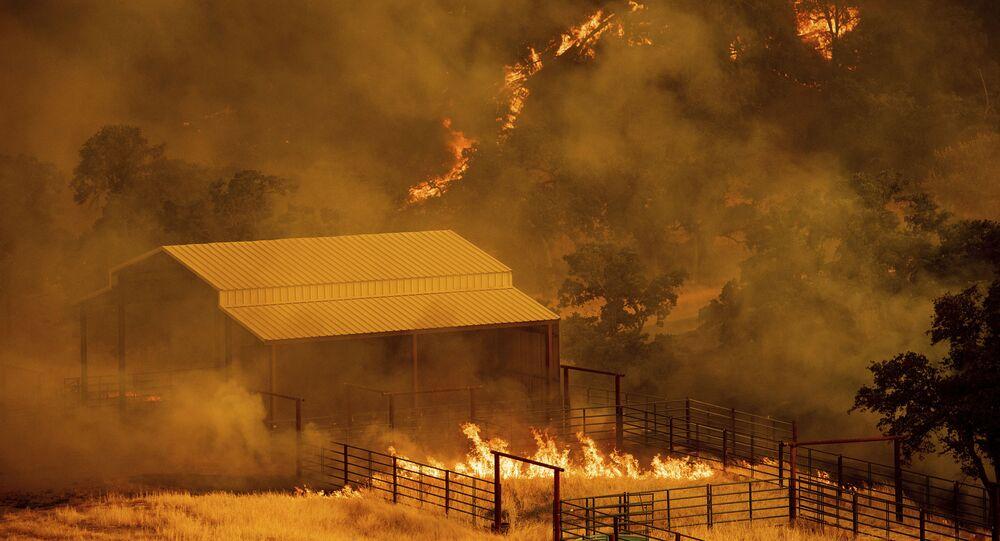 حرائق هائلة في كاليفورنيا، الولايات المتحدة 1 يوليو/ تموز 2018