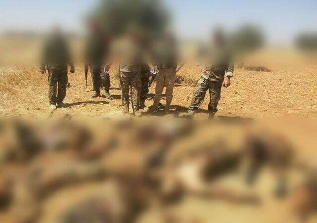 قتلى إرهابيين بعد عبورهم حقلا للألغام زرعه الجيش السوري