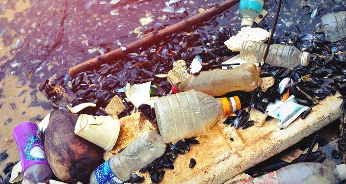 تلوث البيئة ببقايا البلاستيك