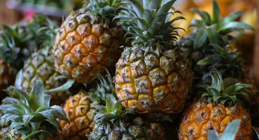 فاكهة الأناناس