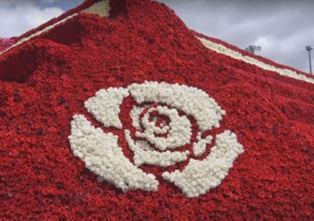 أكبر هرم من الورود في العالم في الإكوادور