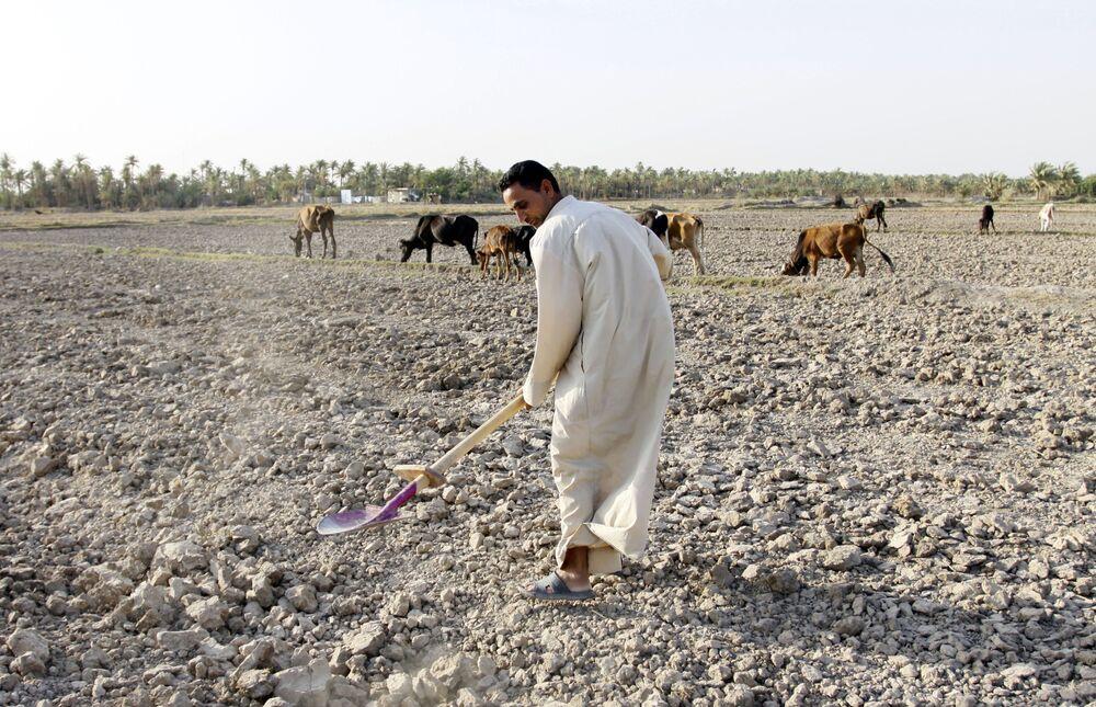 رجل يحرث الحقل، الذي يتعرض للجفاف، في منطقة المشخاب في وسط العراق، 2 أغسطس/ آب 2018