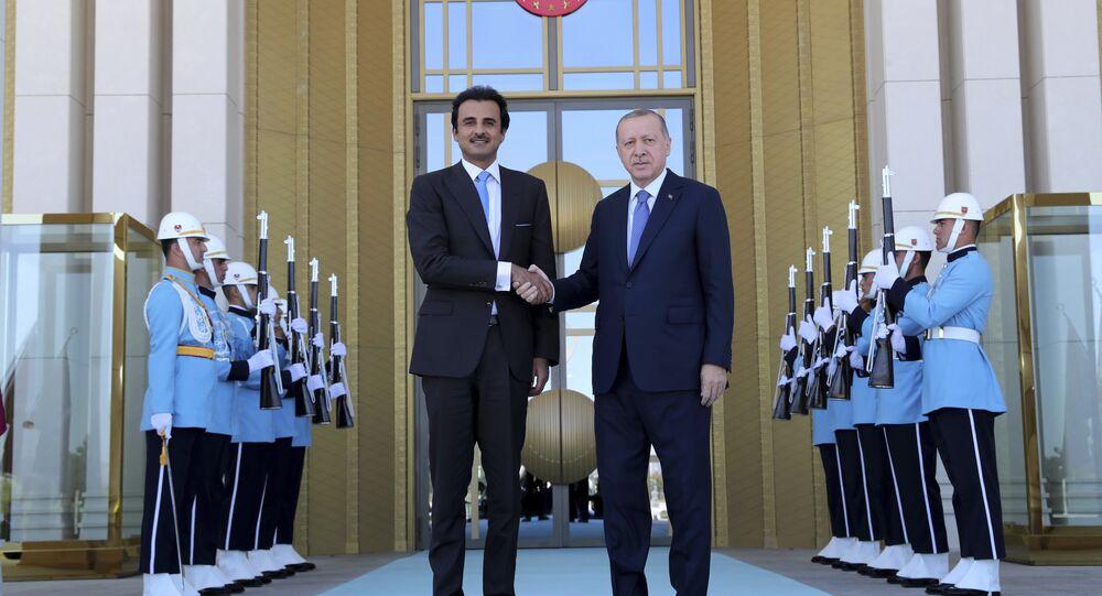 أمير قطر الشيخ تميم آل ثاني ورئيس تركيا رجب طيب أردوغان