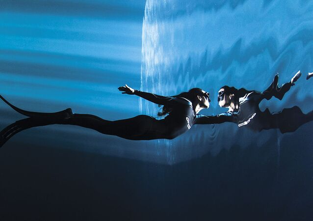 صورة للمصور كريستيان فيزل، الذي فاز بالمركز الثالث في فئة مفهوم لمجلة الصور تحت الماء لعام 2018