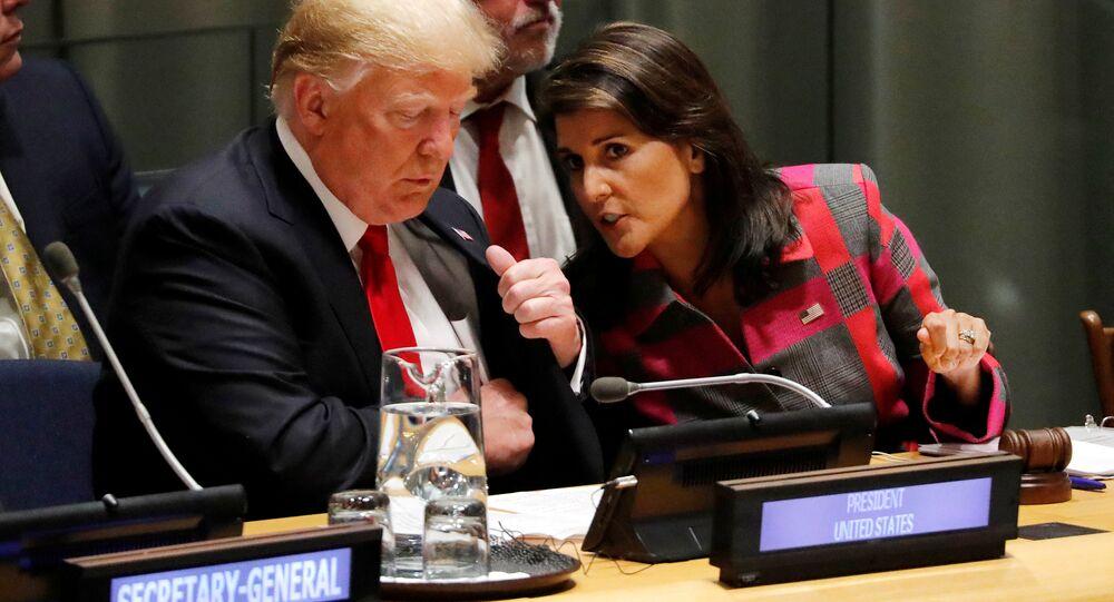 الرئيس الأمريكي دونالد ترامب ومندوبة الولايات المتحدة في الأمم المتحدة نيكي هايلي