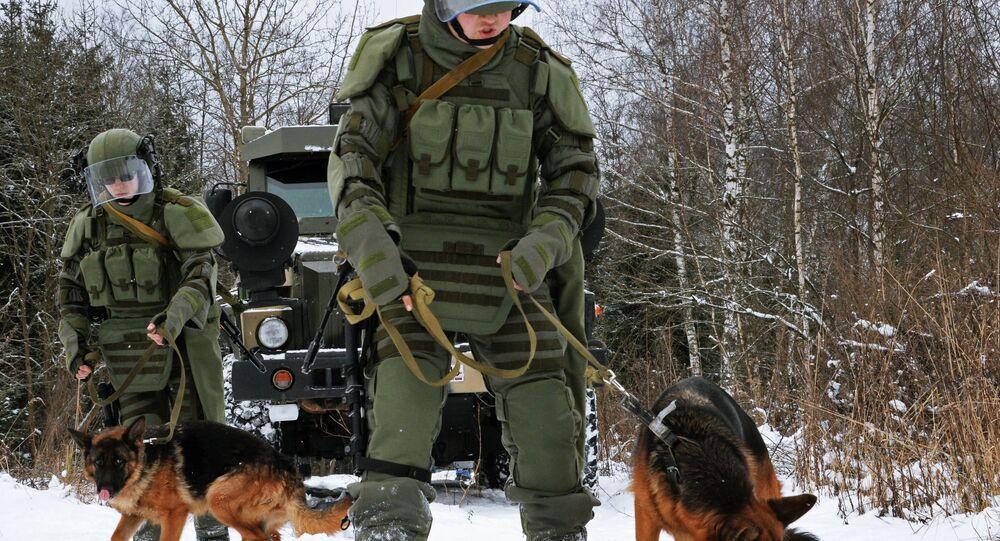 تدريب الكلاب على البحث عن المتفجرات