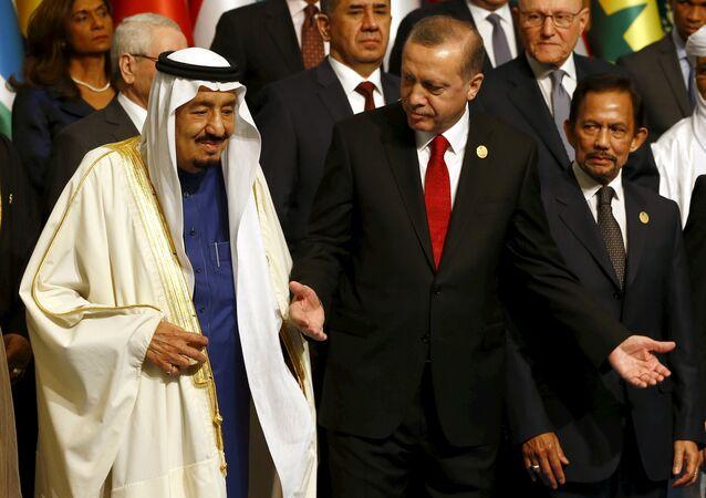 أردوغان وسلمان