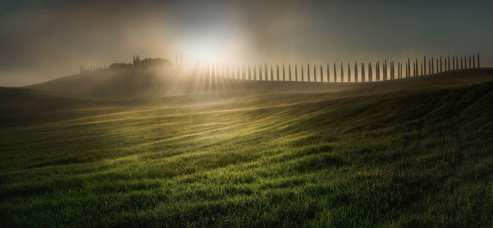 صورة بعنوان تمشيط شعاع الشمس، للمصور فيسيلين أتاناسوف، الفائزة في مسابقة EPSON