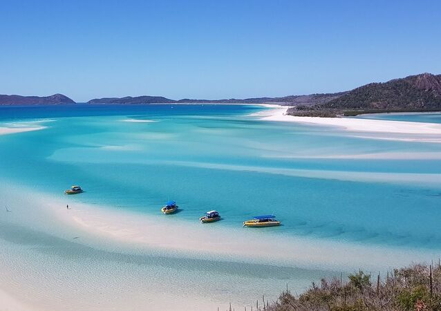 شاطئ وايت هافن في أستراليا